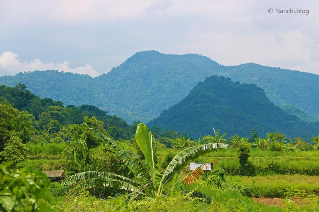 Green Landscape, Gianyar, Bali, Indonesia