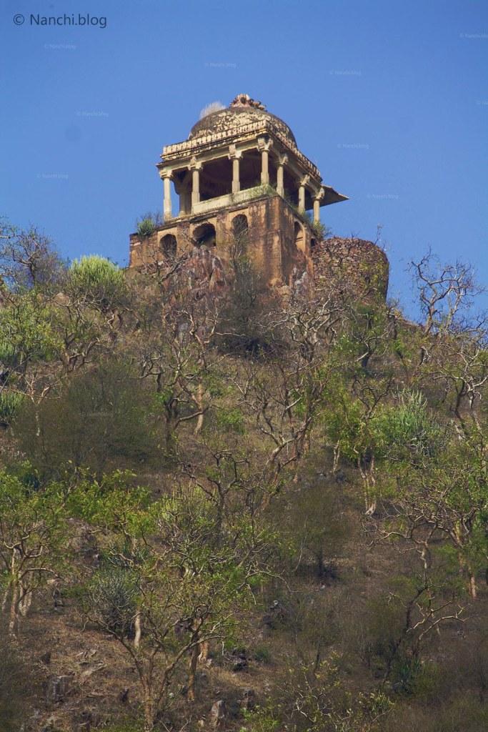 Dome, Bhangarh Fort, Jaipur, Rajasthan