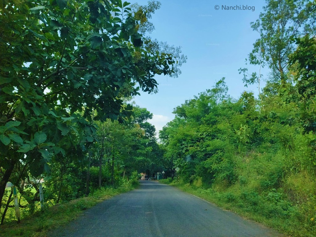 Green Road towards Sinhagad Fort, Pune