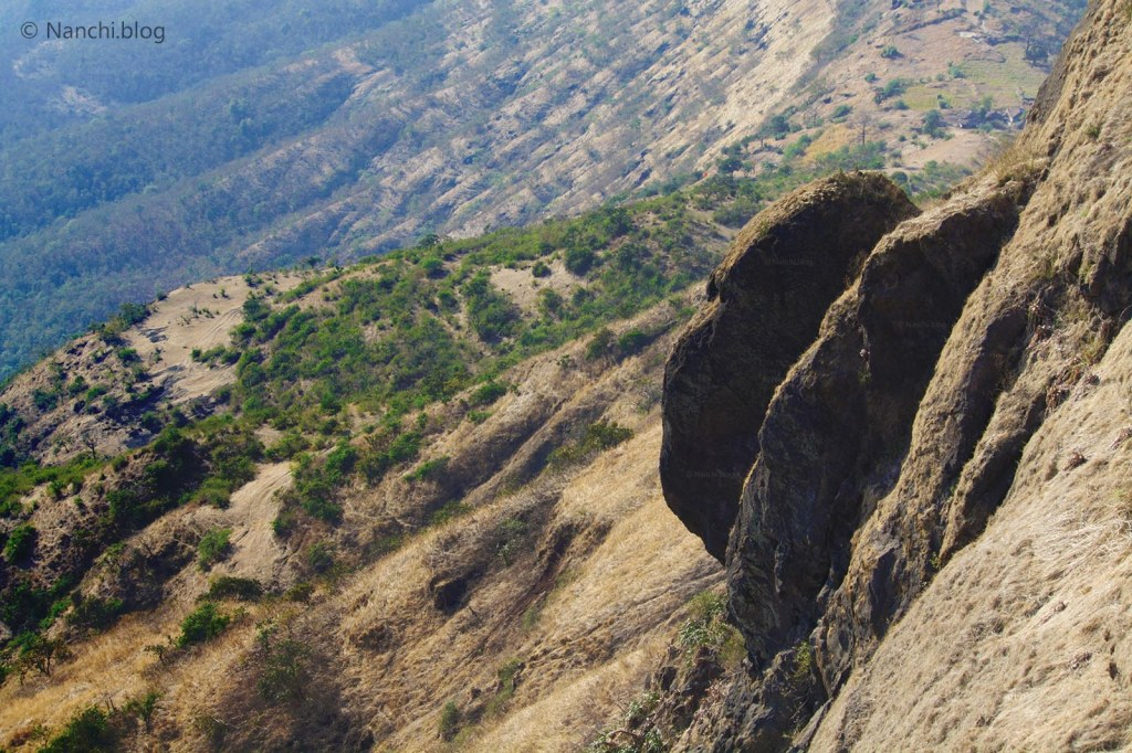 Human Face Structure, Close-up, Sinhagad Fort, Pune