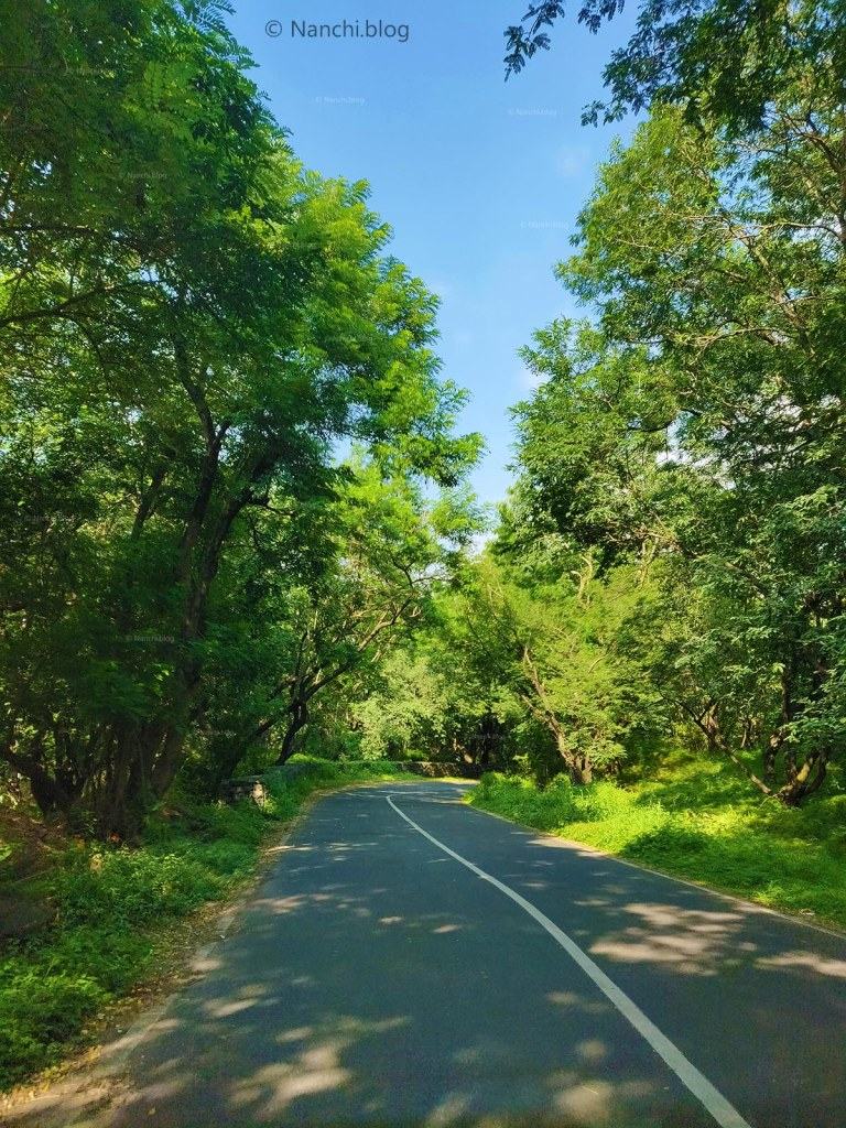 Scenic road leading to Sinhagad Fort, Pune