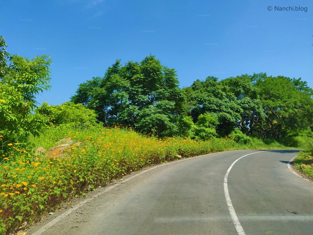Scenic road to Sinhagad Fort, Pune