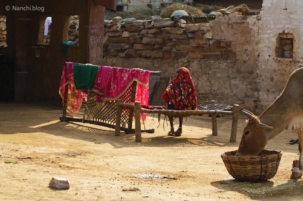 Village House, Bhangarh Fort, Jaipur, Rajasthan