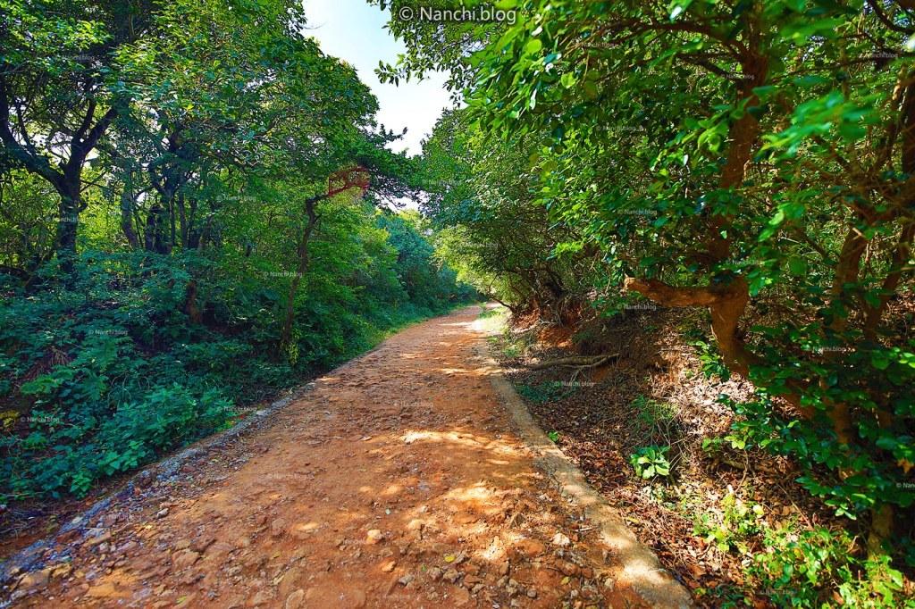 Pathway for Krishnabai Temple of Lord Shiva in Old Mahabaleshwar