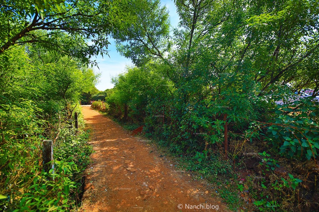 Pathway towards Krishnabai Temple of Lord Shiva in Old Mahabaleshwar