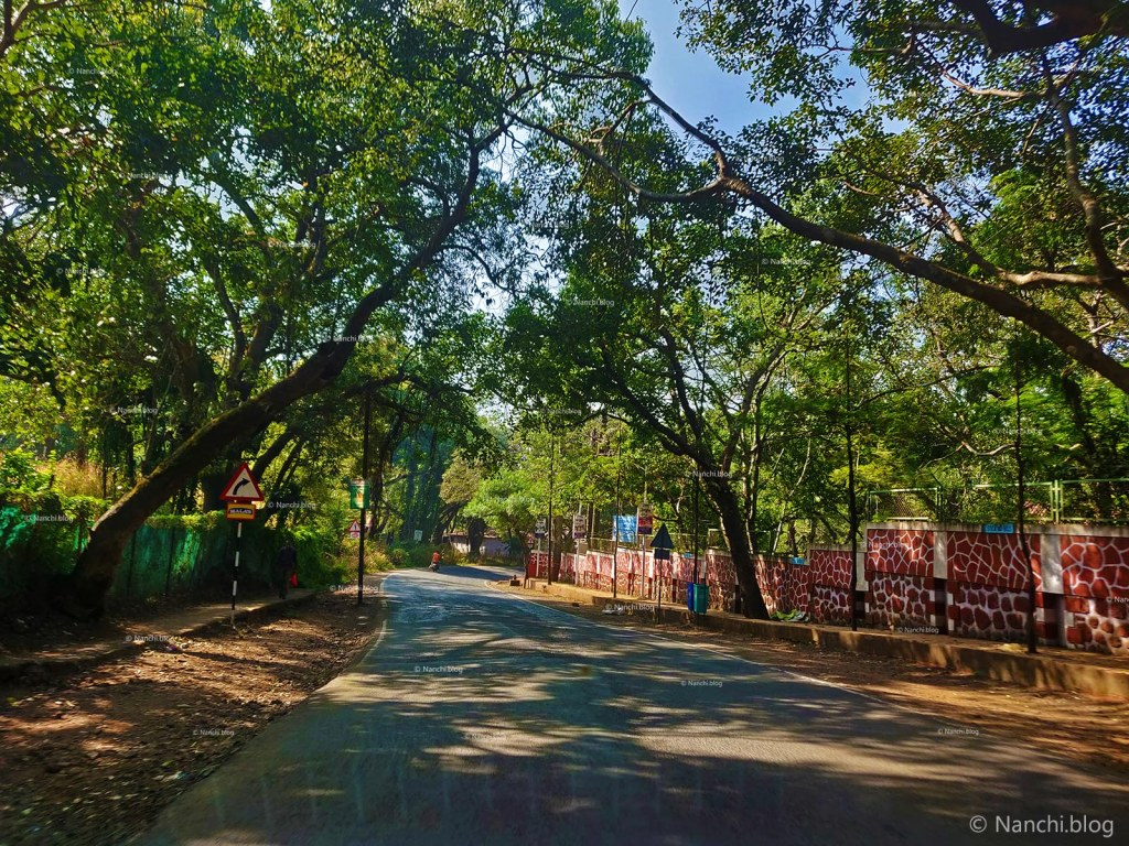 Roads in Mahabaleshwar