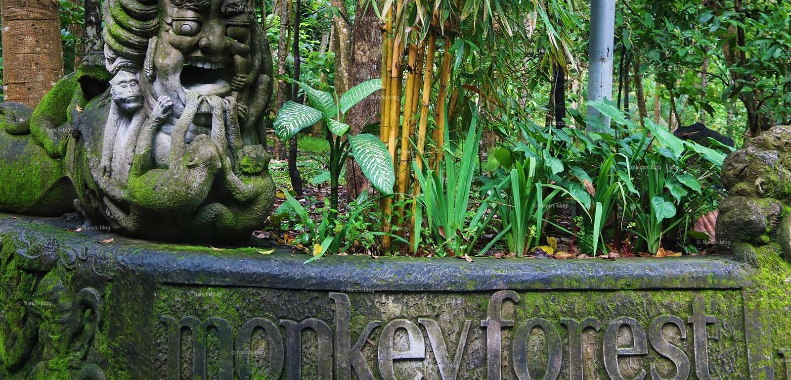 Monkey Forest, Ubud, Bali • Nanchi's Fun Facts Friday!