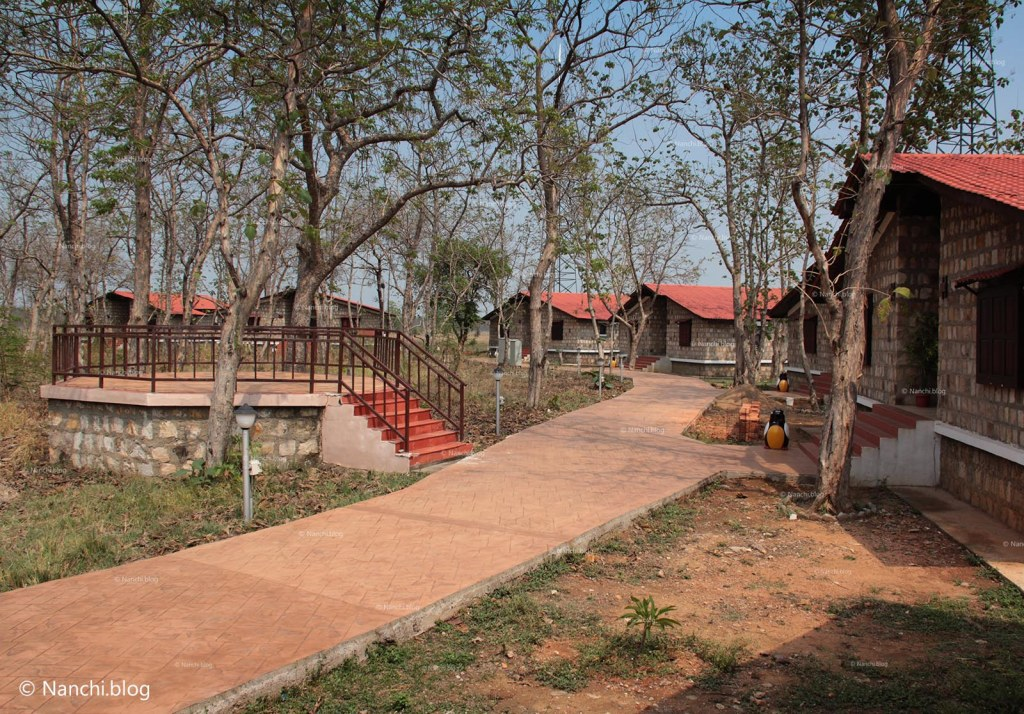 MTDC Tadoba outdoor, Tadoba Andhari Tiger Reserve, Chandrapur