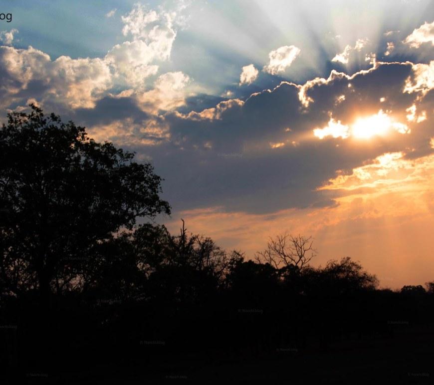 Evening Sky, Tadoba Andhari Tiger Reserve, Chandrapur, Maharashtra