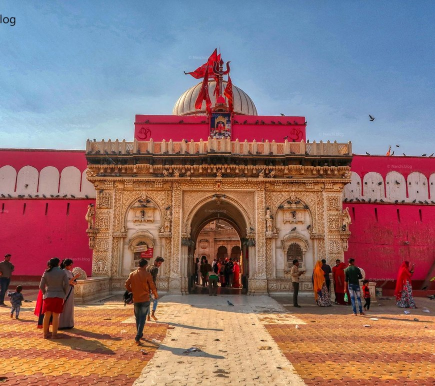 Karni Mata Temple, Bikaner • Nanchi's Fun Facts Friday!