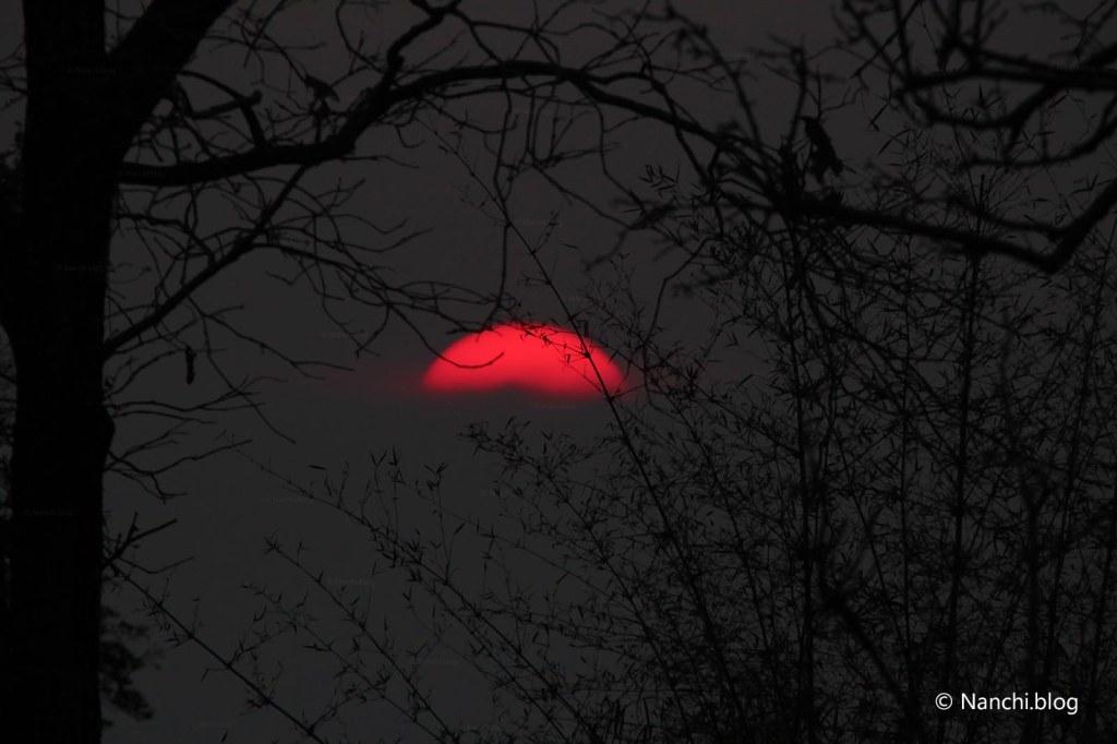 Sunset, Tadoba Andhari Tiger Reserve, Chandrapur, Maharashtra