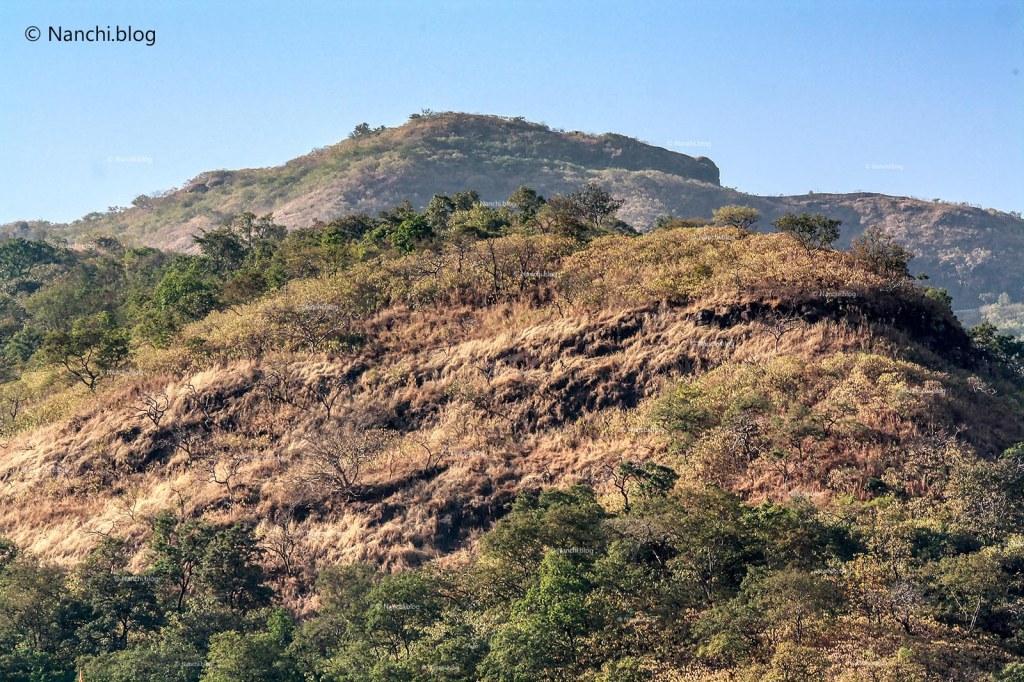 Hills, Sinhagad Valley, Pune
