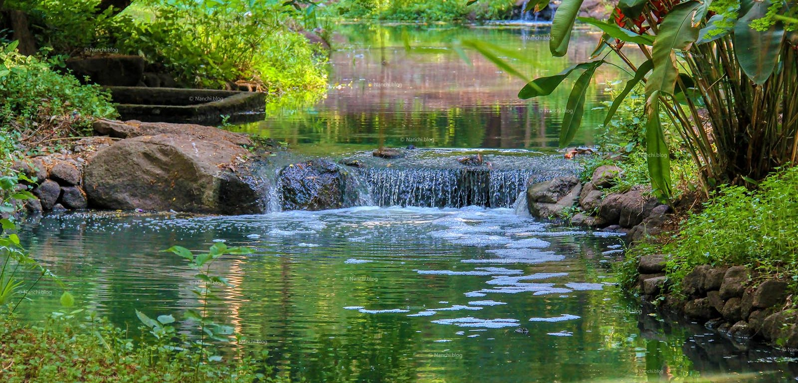 Osho Garden, Koregaon Park, Pune