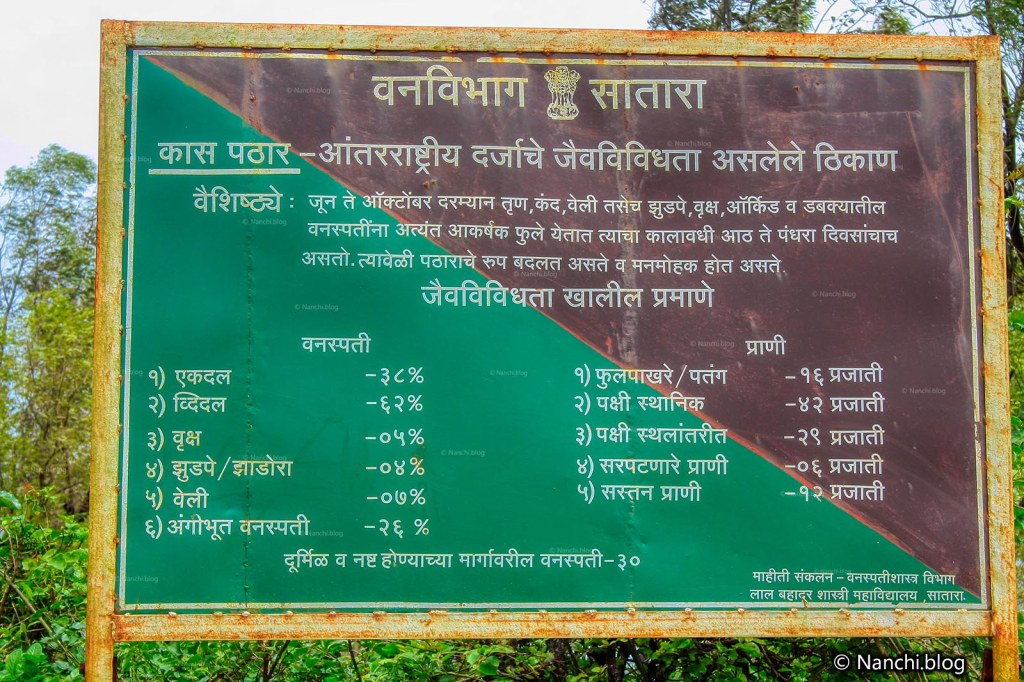 Information Board by Forest Department, Kaas Plateau, Satara, Maharashtra