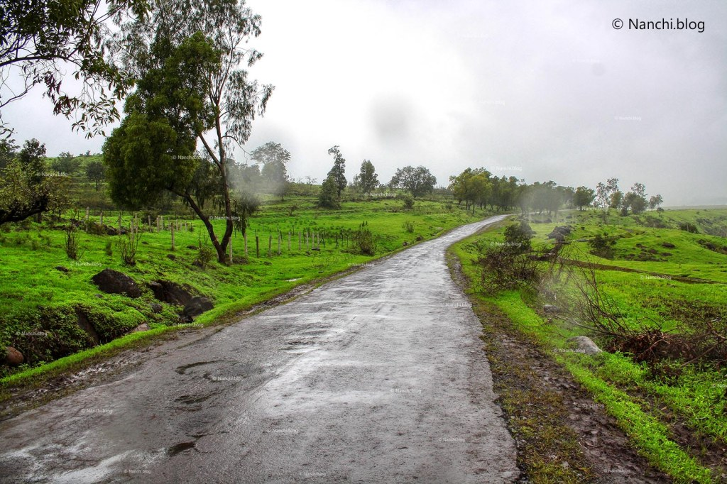 Road towards Kaas Plateau, Satara, Maharashtra