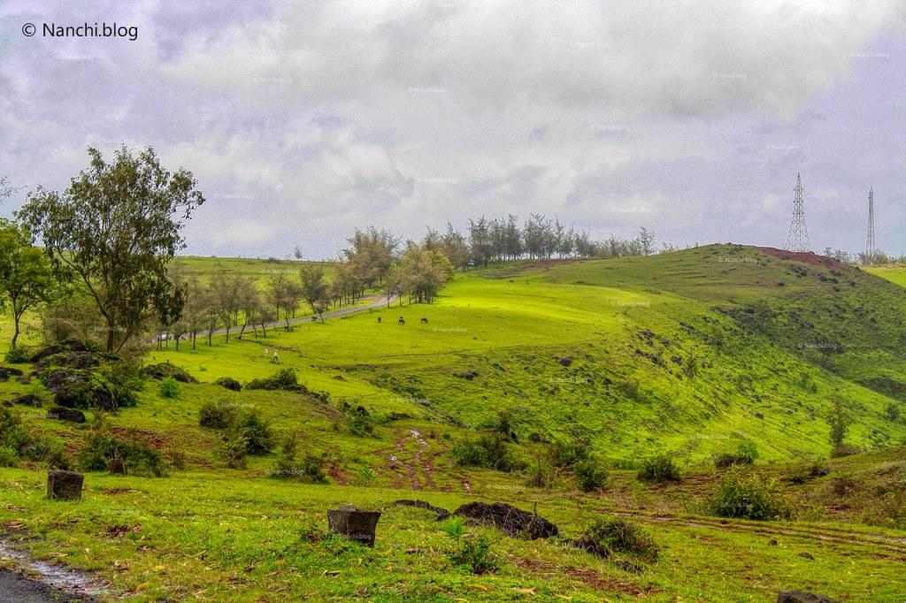 Scenic Route to Kaas Plateau, Satara, Maharashtra